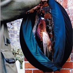 GameSafe - Protect Pheasants and other game