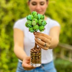 Personalised Chocolate Apple Sweet Tree | 25cm Tall