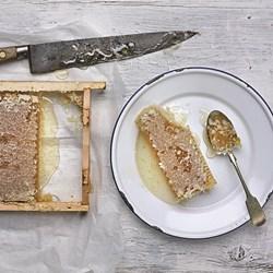 Extra Large Natural Honeycomb