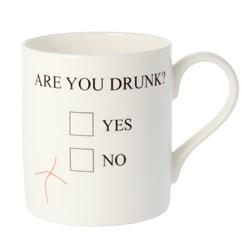 Are You Drunk Mug