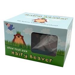 Hairy Beaver Planter
