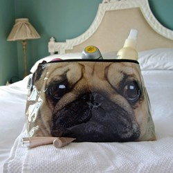 Pug Wash Bag