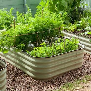 Original Veggie Bed