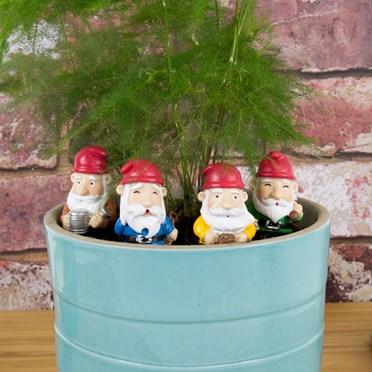 Mini Plant Pot Gnomes