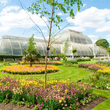 Visit to Kew Gardens with Cream Tea for 2