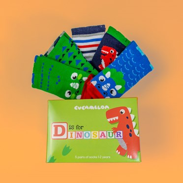D is for Dinosaur Socks Gift Set
