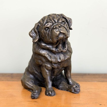 An image of Pug Bronze Sculpture | By Charlie Smith