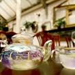 G & Tea Cocktail Teapot and Botanical Infusion Tea Set