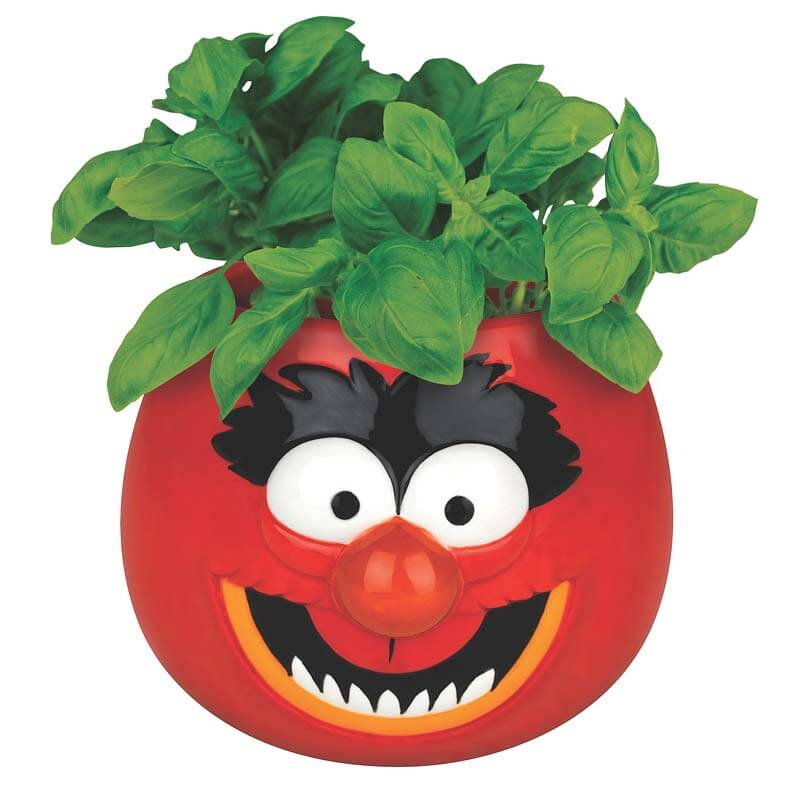 Muppets Planter - Animal