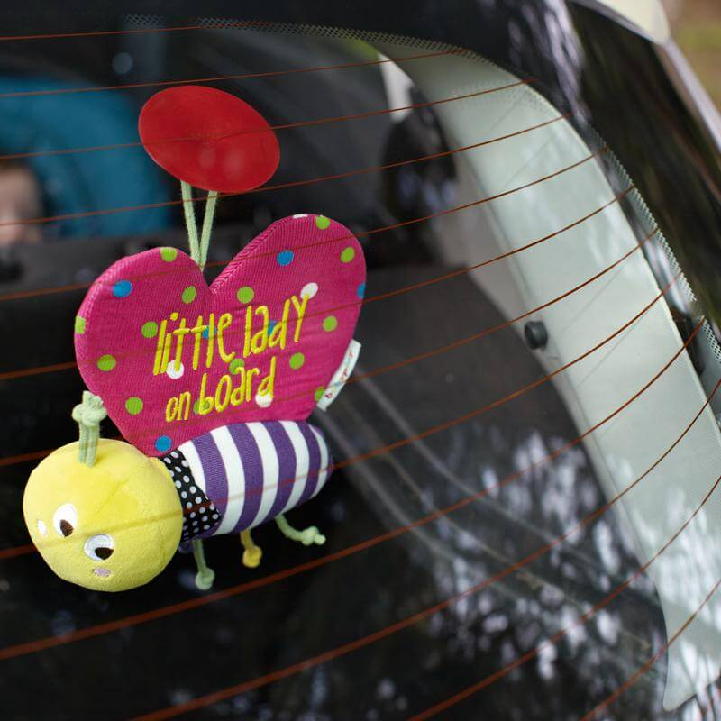 Mamas & Papas Baby On Board Butterfly