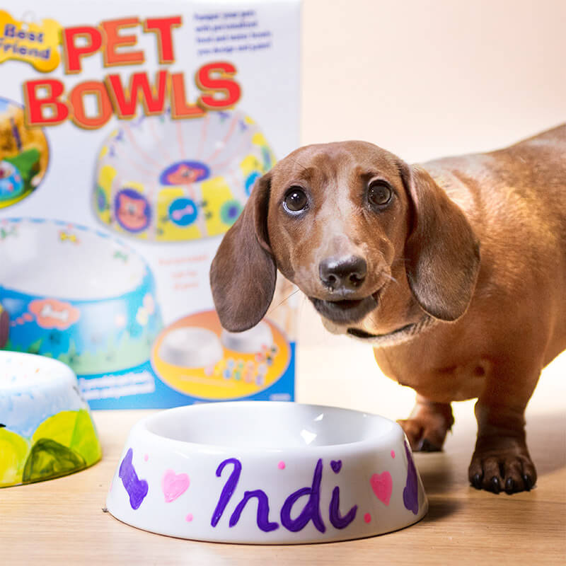 Make Your Own Pet Bowls