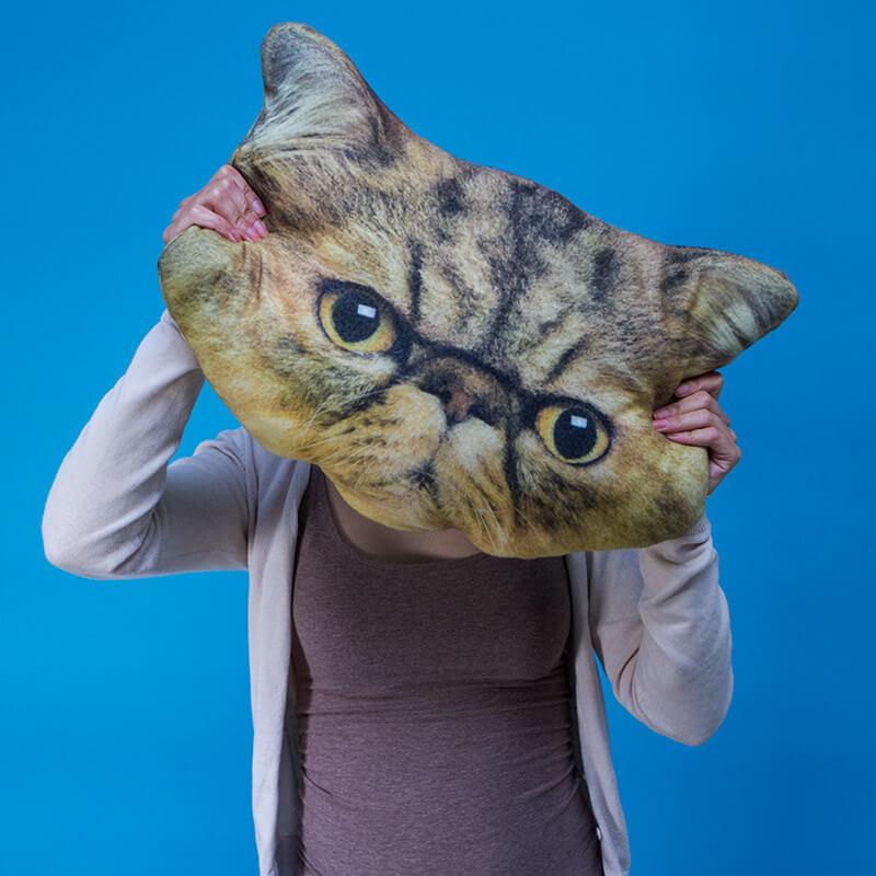 Grumpy Cat Cushion
