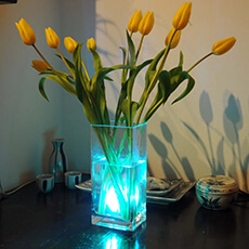 Aqua Mood Light