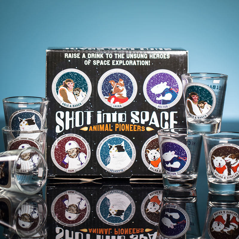 Shot Into Space Shot Glasses
