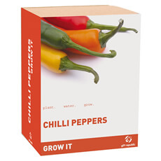 Grow it - Chilli Plant