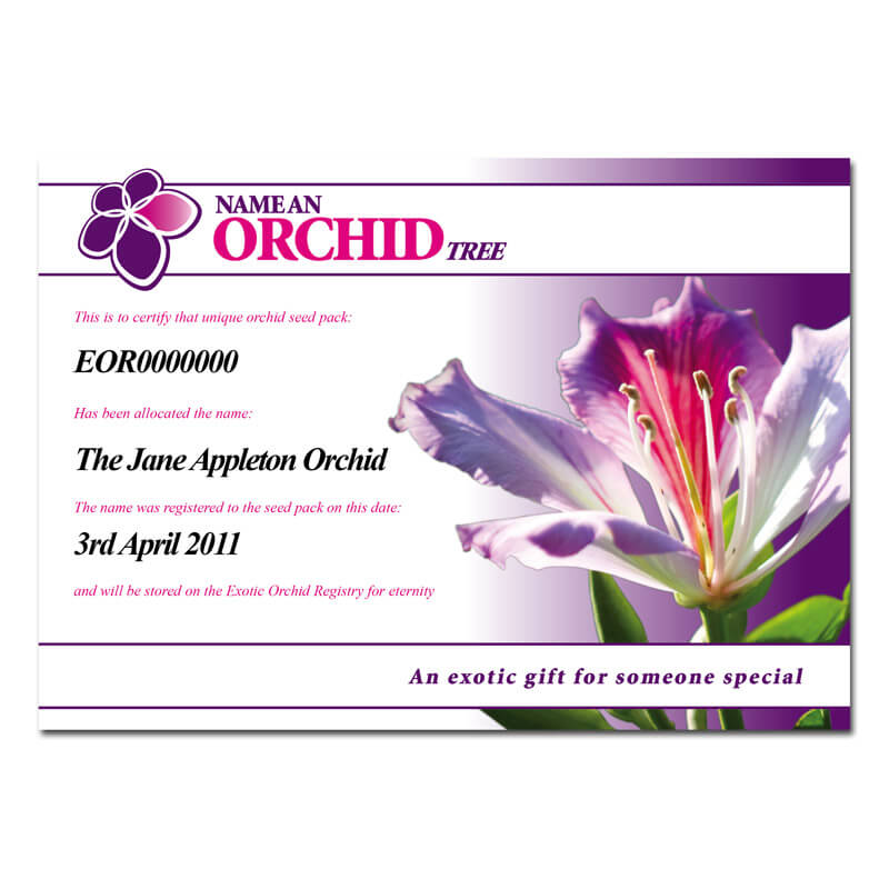 Name an Orchid