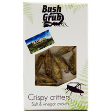 Salt and Vinegar Crickets Crispy Critters