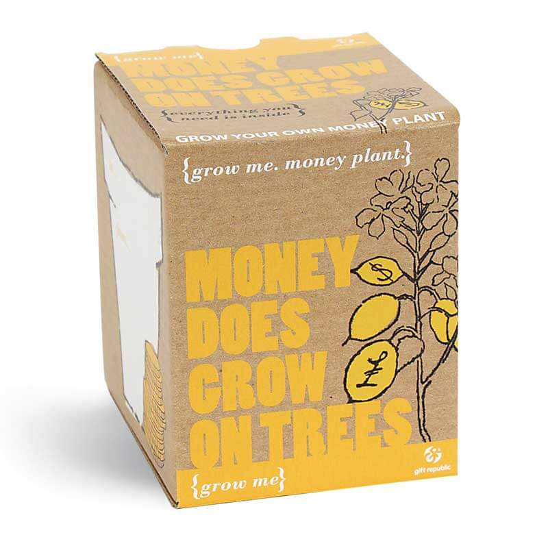 Grow Me - Money Does Grow on Trees - 40th Birthday Novelty Gifts