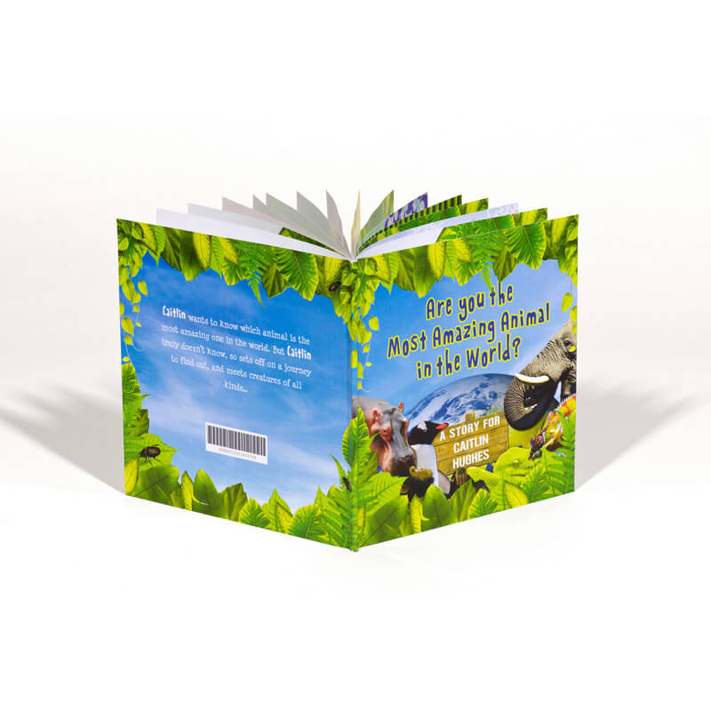 Personalised Most Amazing Animal Book
