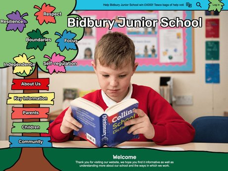 Website Design For Bidbury Junior School