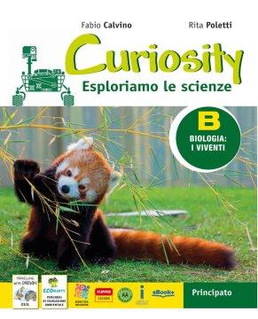 Curiosity B