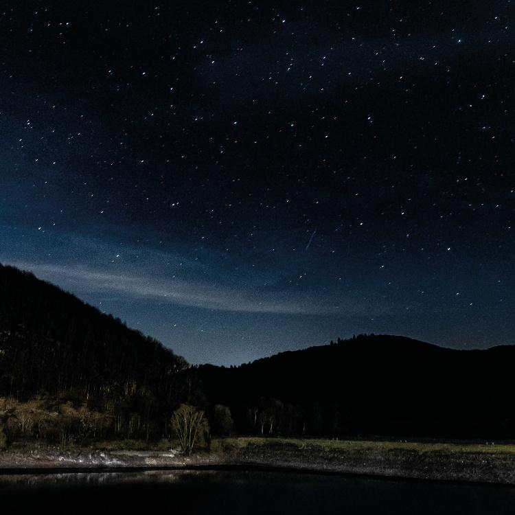 Photograph: Starry landscape