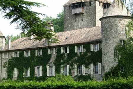 Hôtellerie Du Château De Coudree, Salle de location Sciez  #0