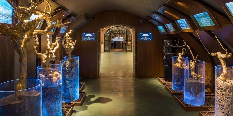 Les Caves du Louvre: Parcours des sens, Salle de location Paris Les Halles #0