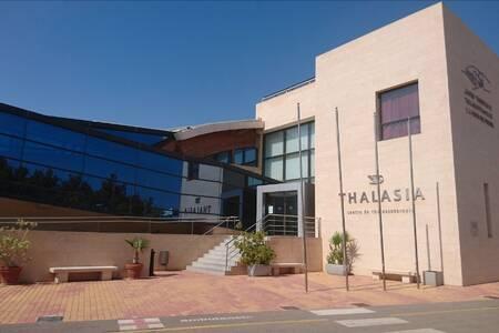 Thalasia Costa De Murcia, Sala de alquiler San Pedro del Pinatar  #0