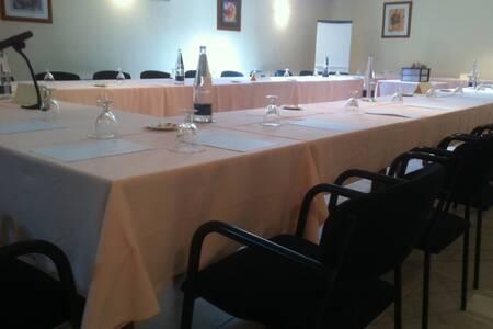 Hotel La Seu, Sala de alquiler La Seu d'Urgell  #0
