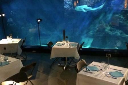 L'Aquarium de Lyon, Salle de location La Mulatière  #0