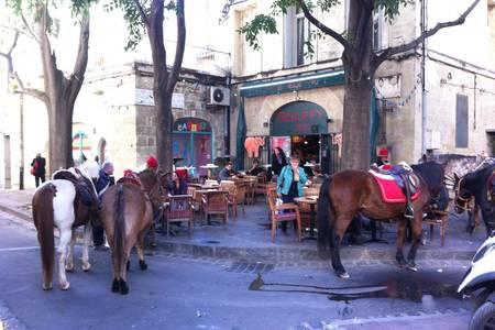 Le Rebuffy Pub, Bar Montpellier Centre historique #0