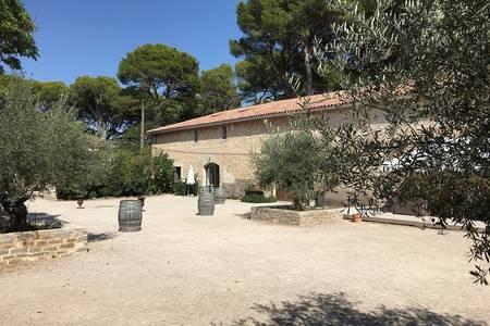 Domaine de la Grangette, Salle de location Montagnac Domaine de la grangette #0