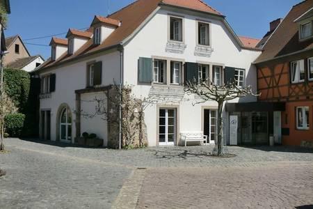 A la Cour d'Alsace, Salle de location Obernai  #0