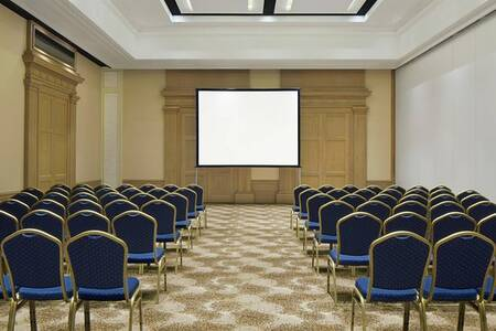 The Westin Dragonara Resort, Salle de location Malte  #0