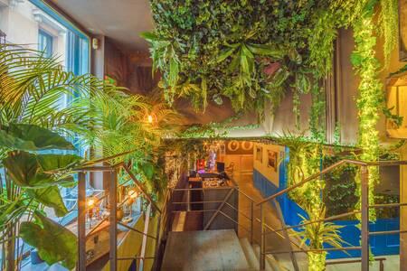 Botanico : privatización total, Sala de alquiler Madrid Malasaña #0