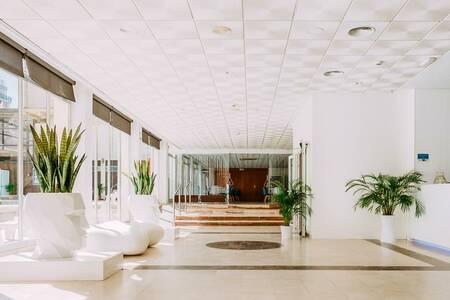 Hotel Safari, Sala de alquiler Platja de Gandia  Platja de Gandia #0