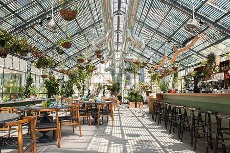 Green House Restaurants, Restaurante Madrid Centro  #0