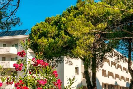Cap'Vacances La Grande Motte, Salle de location La Grande-Motte  #0