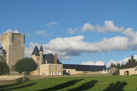 Château De Mazière, Salle de location Tendu  #0