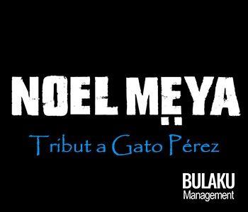Noël Meya