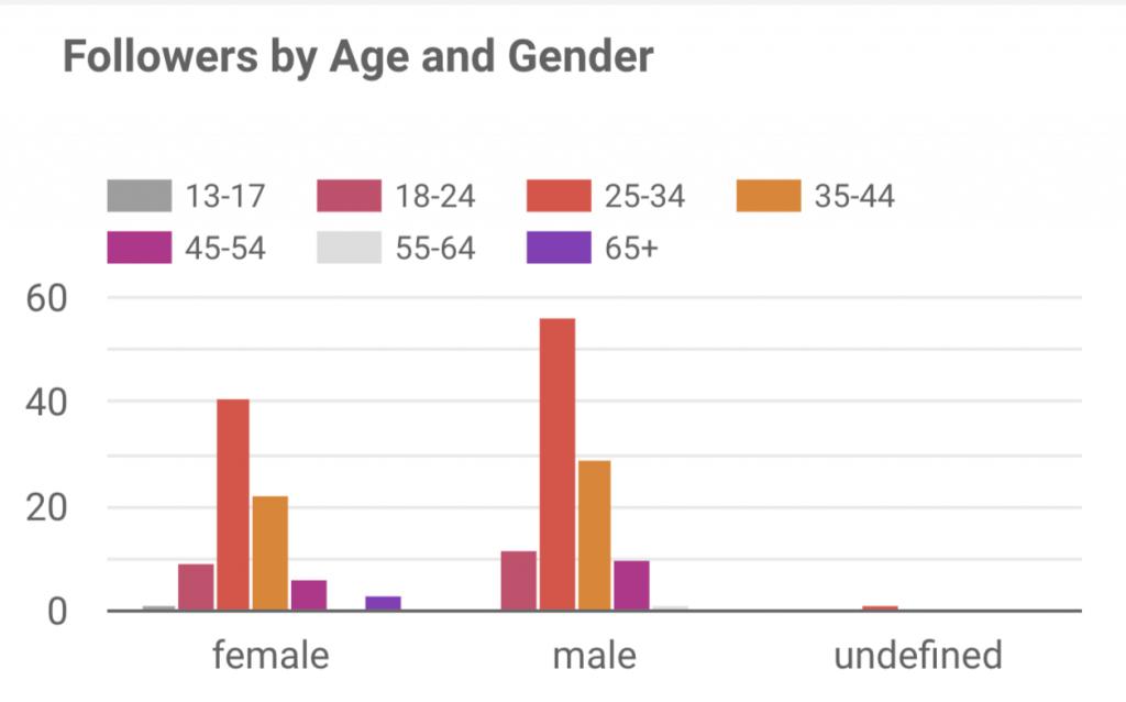 Instagram audience demographic data