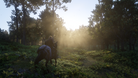 screenshot of Red Dead Redemption 2 on PC