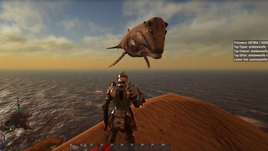 picture showing a character looking at floating whale