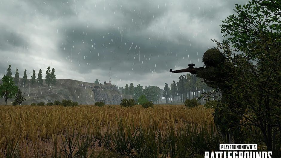 A man hiding in foliage next to a field in Playerunknown's Battlegrounds