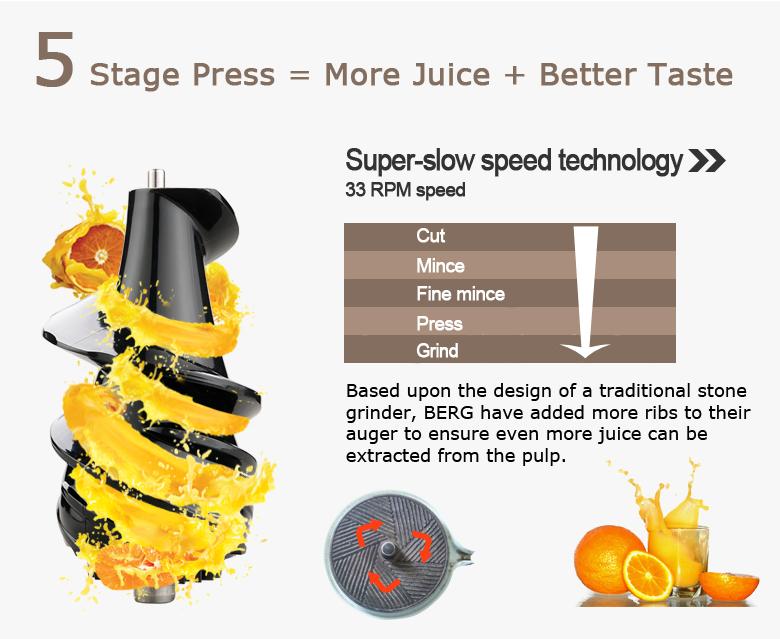 BERG J250 Pro Slow Juicer