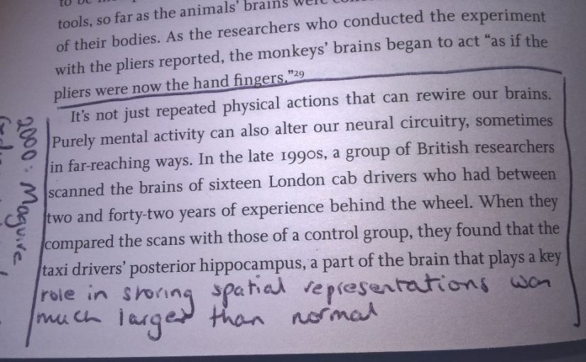 💎 On how our behaviour can change the physical make up of our brain (e.g. London cab drivers)