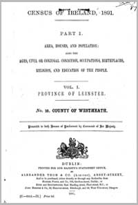 photo of Census Reports: County Westmeath 1891 (DOWNLOAD)