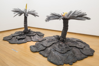Keith Edmier, Cycas Orogeny', 2003-2004. Collection Stedelijk Museum Amsterdam. Photo: Peter Tijhuis