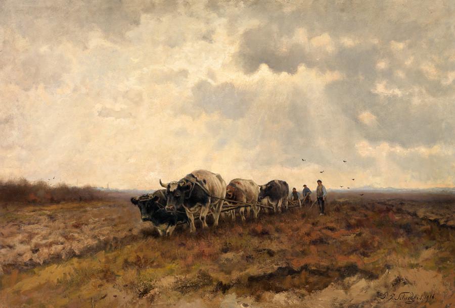 Petrus Schiedges, Ploegende ossen, 1916